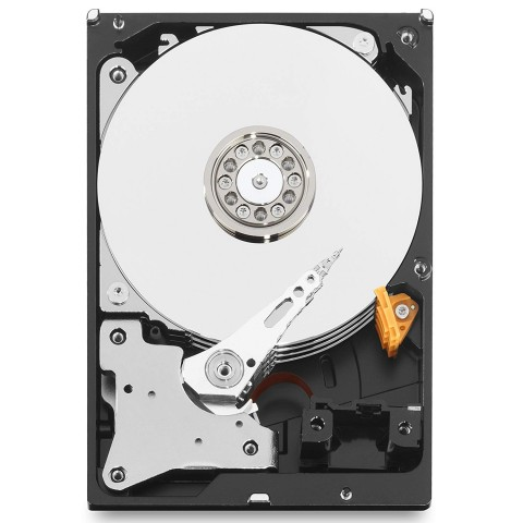 Exposed platters of a Western Digital hard drive.
